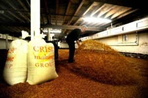 Crisp Floor Maltings